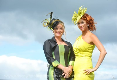 Ffos Las Ladies Day