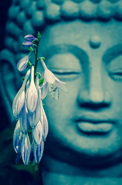 Flowers and Buddha