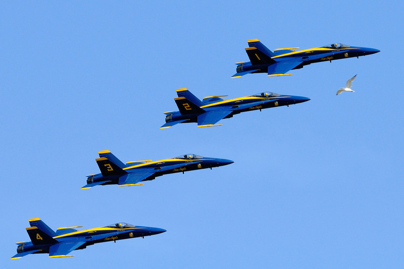 The Cleveland Air Show as seen from Wendy Park