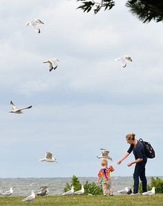 A mom and her son feeding the bird at Edgewater