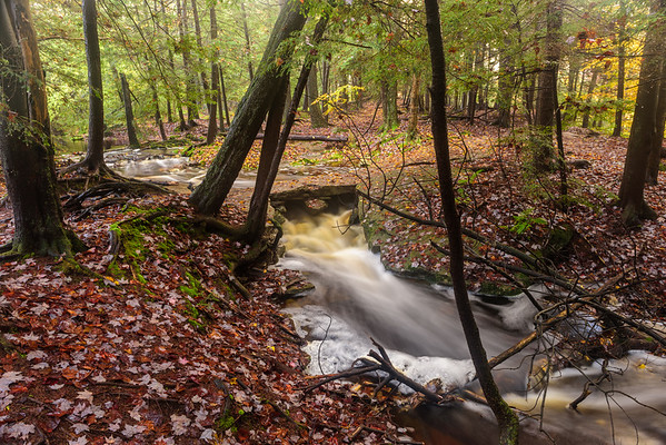 Stream along the Highland Trail