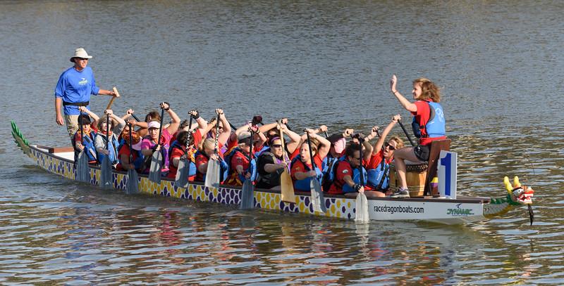 Dragon Boat Races 2014