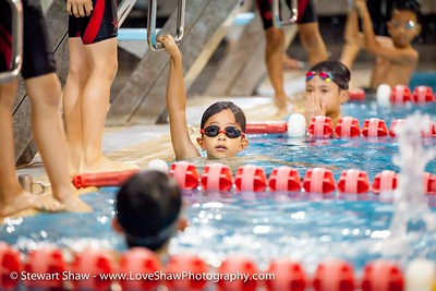 HWISwimmeet23may2015-140