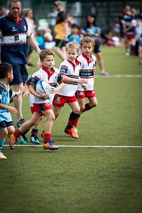 RugbySandyBay23rdNov2014-245