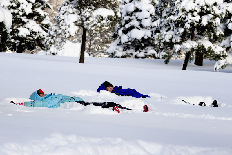 Making Snow Angels at the Punderson Sled Dog Classic