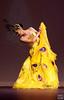 傣族舞蹈-金色的孔雀