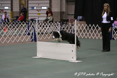 Cleveland Dog Show