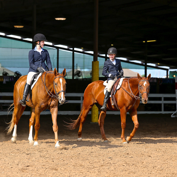 Scene #24,  Great Southwest Equestrian Center - Katy, Texas