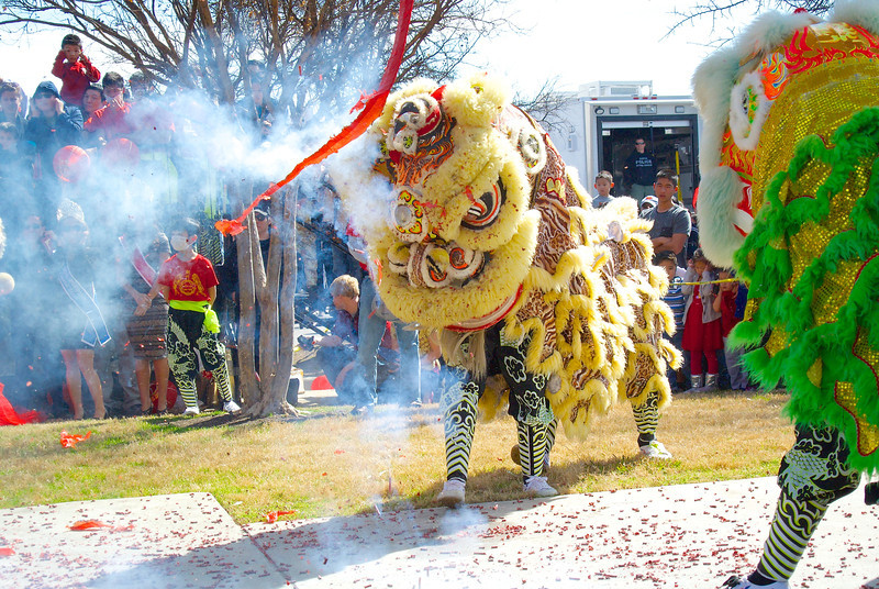Lion Dance #3, 2014 Chinese New Year Celebration - Austin, Texas