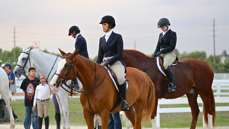 Scene #29,  Great Southwest Equestrian Center - Katy, Texas