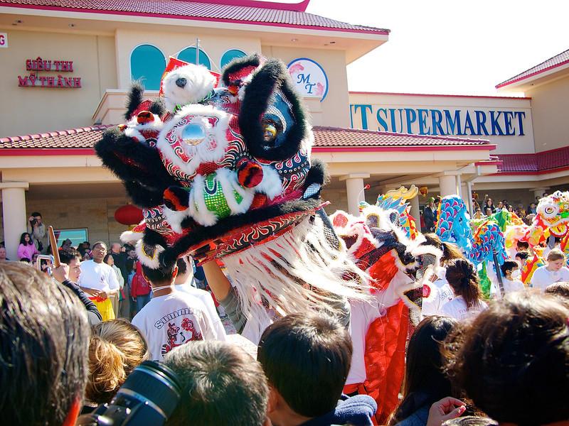 Lion Dance and Supermarket, 2012 Chinese New Year Celebration - Austin, Texas