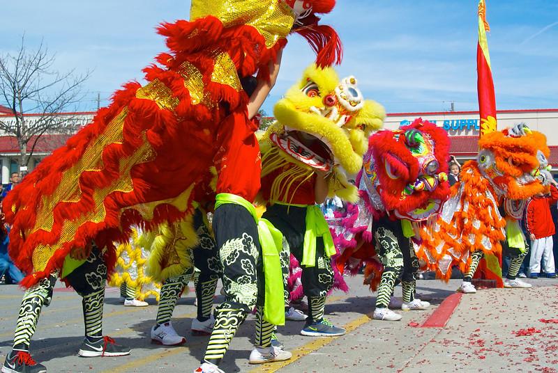 Lion Dance #6, 2014 Chinese New Year Celebration - Austin, Texas