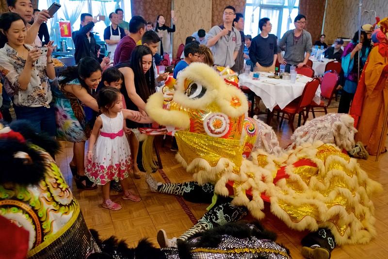 Feeding the Lion, 2016 Chinese New Year Celebration - Austin, Texas