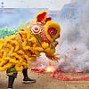 2017 Chinese New Year - Austin, Texas