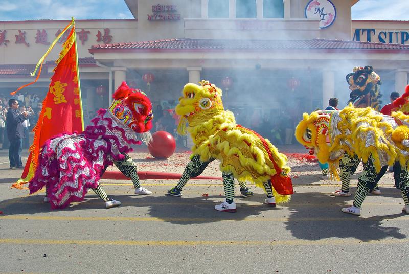 Lion Dance #5, 2014 Chinese New Year Celebration - Austin, Texas