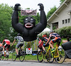 Riders in the the Men's Category 3 race pass by an inflatable Gorilla proclaiming the King of the Mountain at the top of Glenwood Street during the Quad Cities Criterium in the Village of East Davenport on Memorial Day, Monday, May 26, 2014.