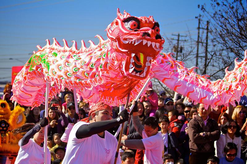Dragon Dance, 2012 Chinese New Year Celebration - Austin, Texas