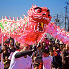 Dragon Dance, 2012 Chinese New Year Celebration - Austin, Texas