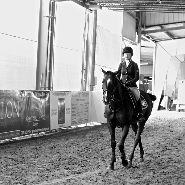 Scene #4,  Great Southwest Equestrian Center - Katy, Texas