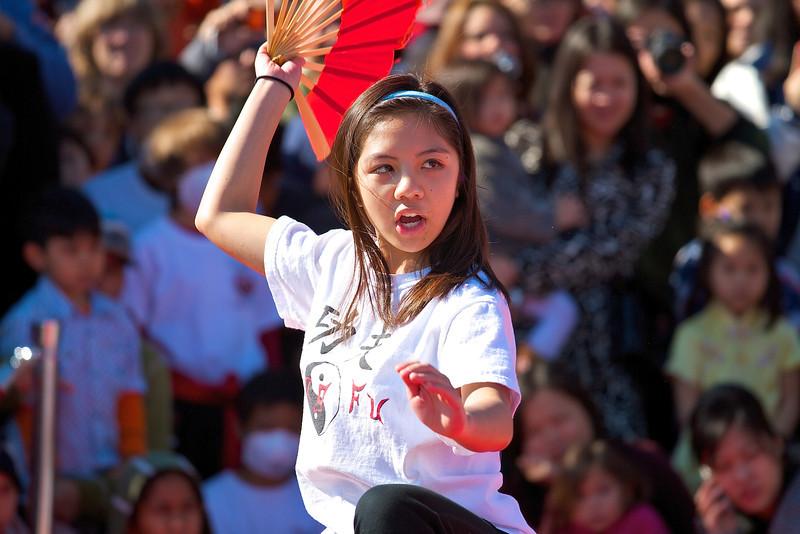 Martial Arts, 2012 Chinese New Year Celebration - Austin, Texas