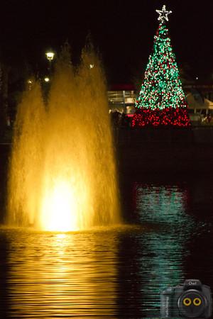Lighting of the Tree in Oviedo; Photo taken for Oviedo Photo Club