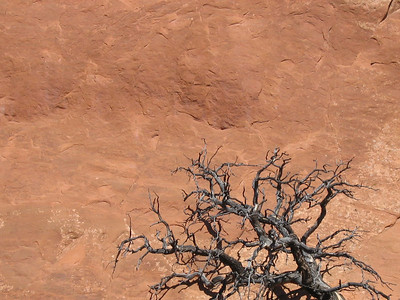 Utah sandstone.