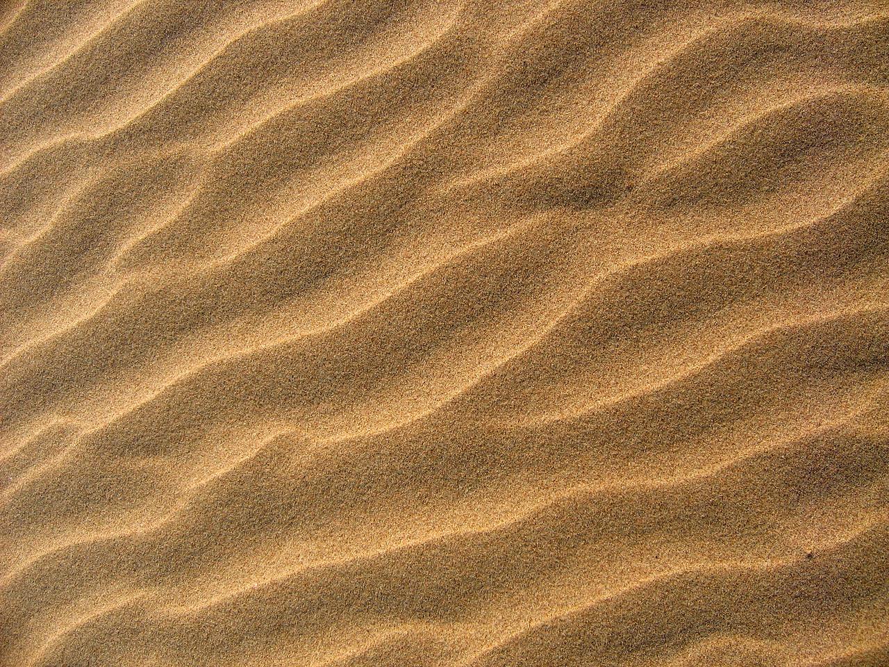 A lil' bit of Texas beach.