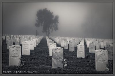 JB_Cemetery-20091121-226
