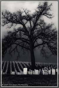 JB_Cemetery-20091121-238