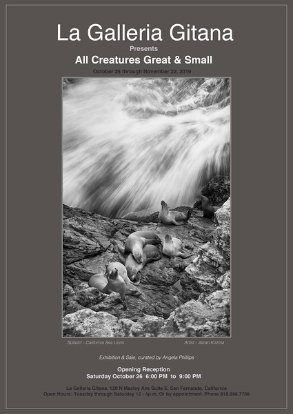 All Creatures Great & Small 2019 - Photography Exhibit & Sale
