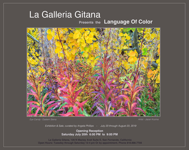Language Of Color 2019 - Photography Exhibit & Sale
