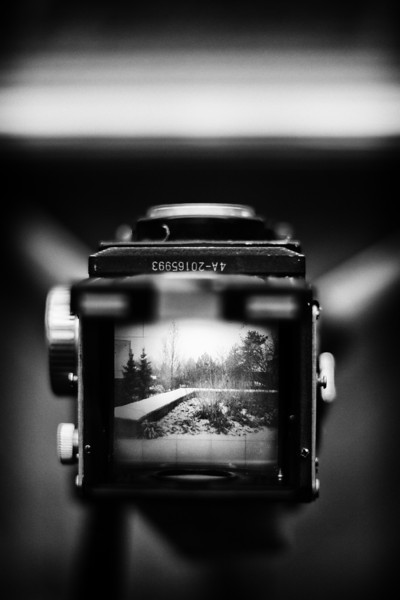 Through the viewer of a TLR camera.