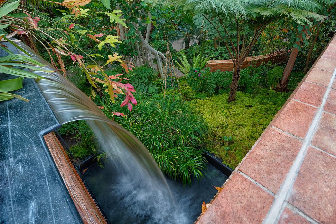 Waterfall - Matthaei Botanical Gardens