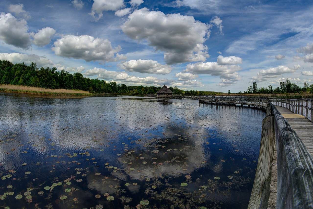 Crosswinds Marsh, MI 2014