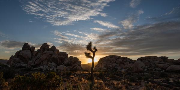 JTNP Sunset