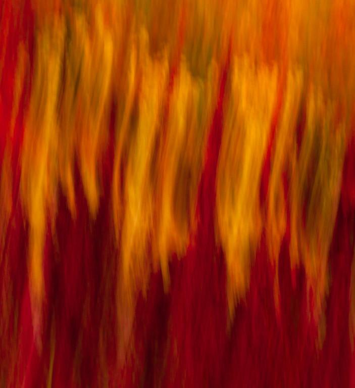 Inferno / L'enfer