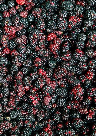 Blackberry Delight