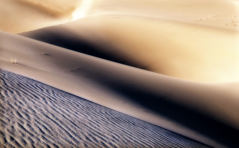 Dune Abstract 5*