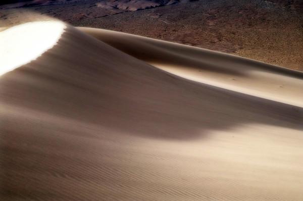 Desert Breeze*
