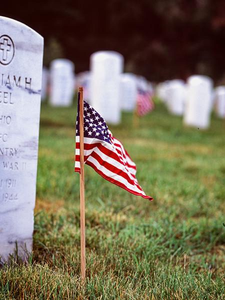 Honoring the War Dead