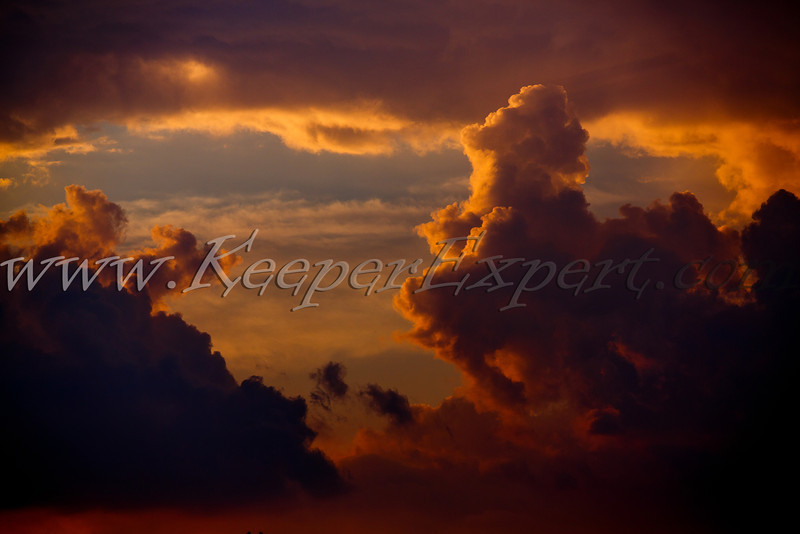 Walking my dog yesterday I came across this fiery horse, it seems like the skies were sending their messenger to warn us about an approaching thunderstorm:))<br /> It is available as a wall mounted Metal Print. Hit the buy button and add one of the products in the basket to see a video demo of the product.