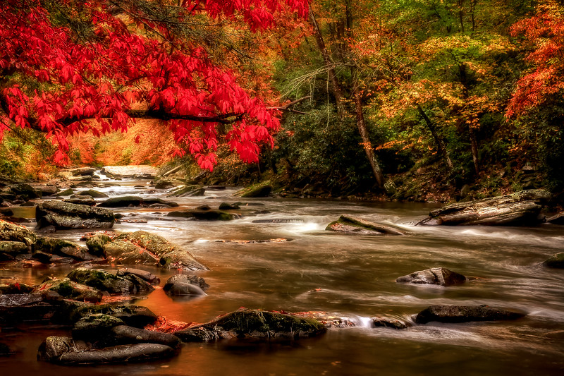 Soothing Red Creek