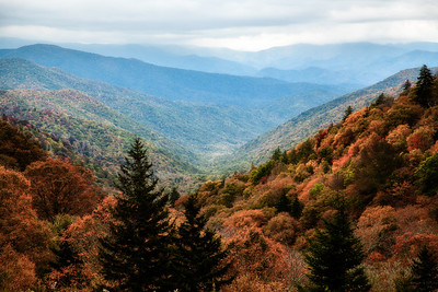 Majestic Autumn In The Smokies