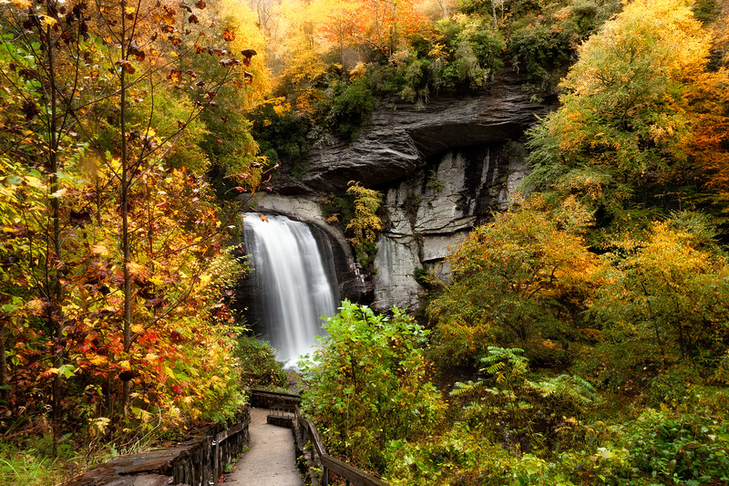 Autumn At Looking Glass Falls