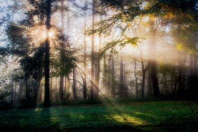 Glory Rays