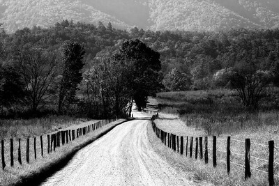 Cades Cove Country Road