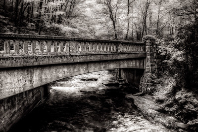 Moore Cove Bridge B&W