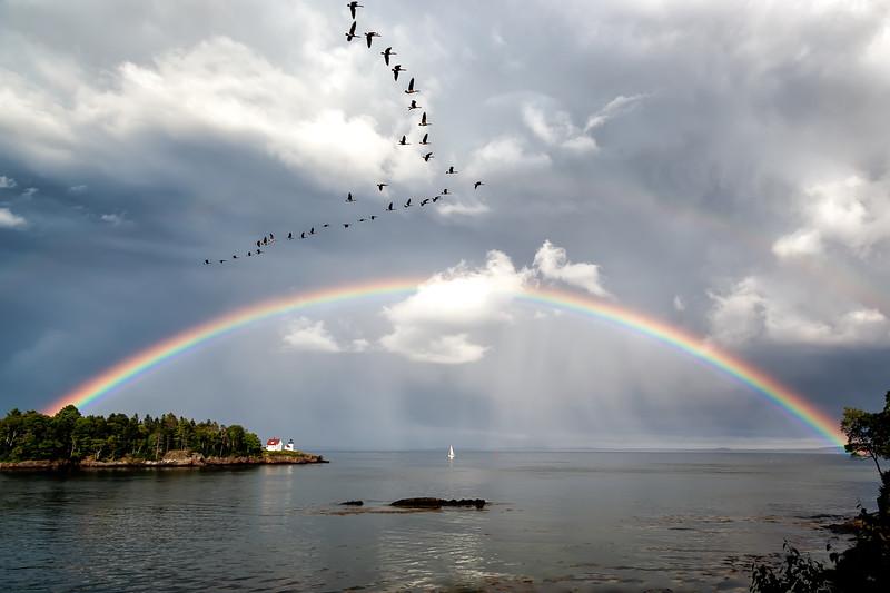 Rainbow Over Curtis Island