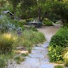 Lovely natural garden with flagstone path