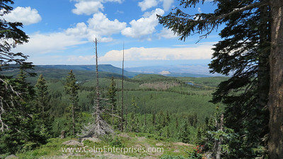 IMG_9125 4x6D Grand Mesa NF Colorado